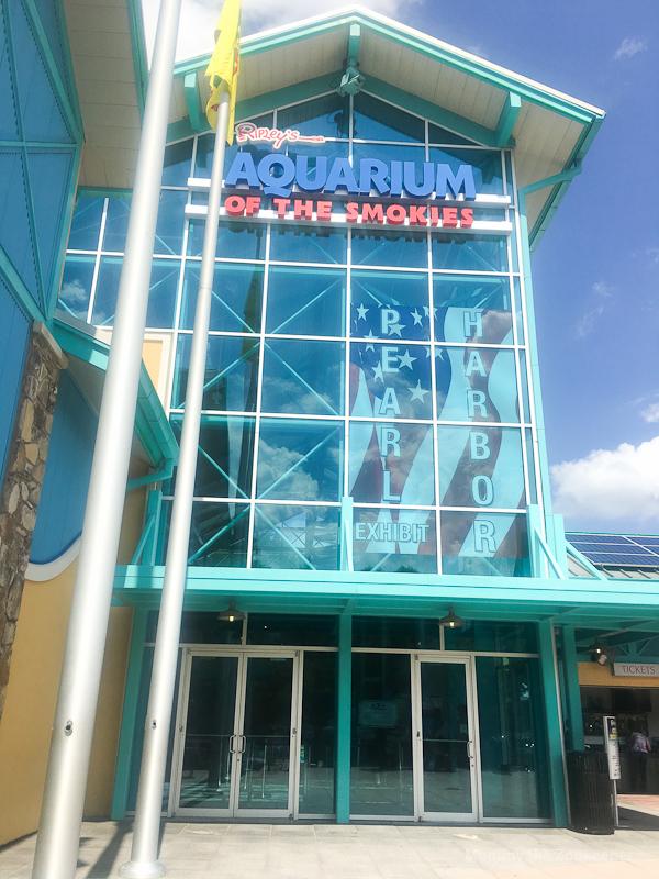 ripleys-aquarium-of-the-smoky-mountains-1078