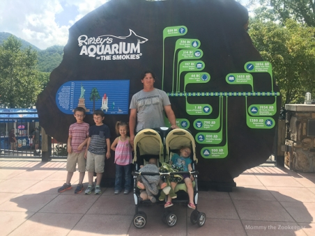 ripleys-aquarium-of-the-smoky-mountains-1090