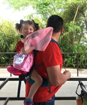 little girl riding in carrier on dad's back